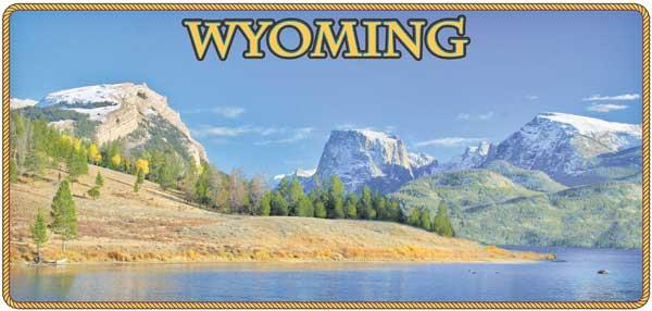 2017 Wyoming License Plate